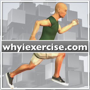 elite fitness inversion table manual