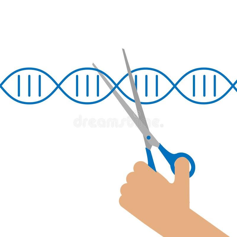 molecular cloning a laboratory manual download